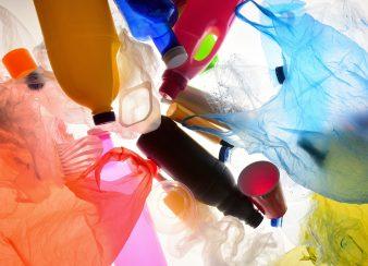 mercado sem lixo
